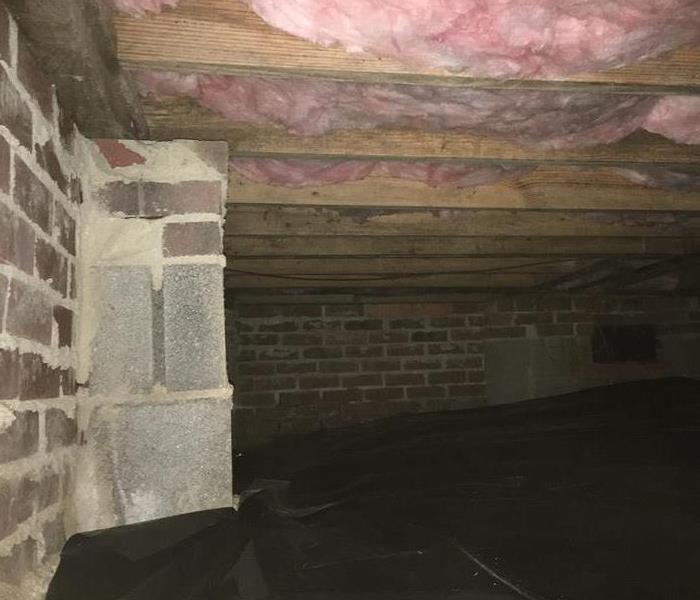 Crawlspace Mold Cleanup After