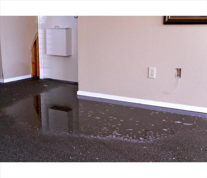 Water Damage What Is Gray Water?